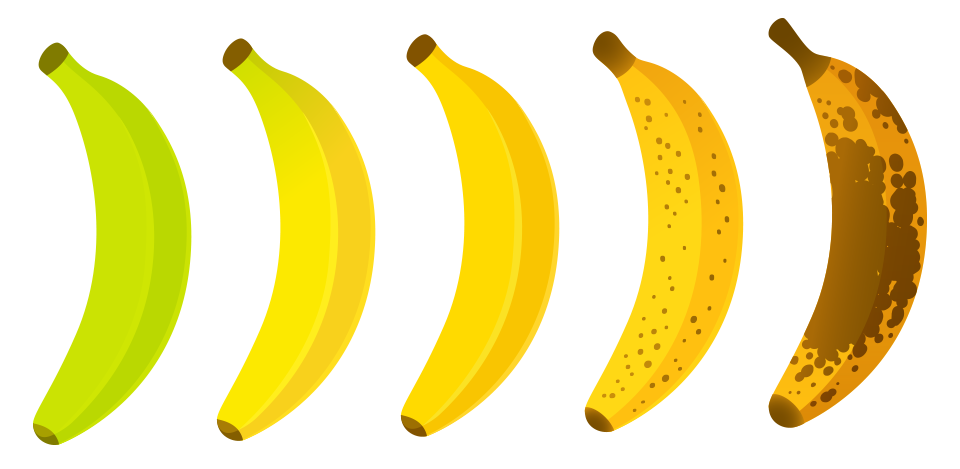 lavida_banana_the_banana_paradise