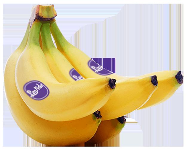 lavida_banana