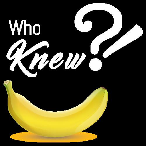 lavida_banana_who_knew_vector